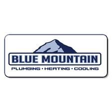 Medium logo blue mountain