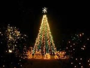 Medium christmas 20tree