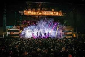 Medium winterwondergrassweb