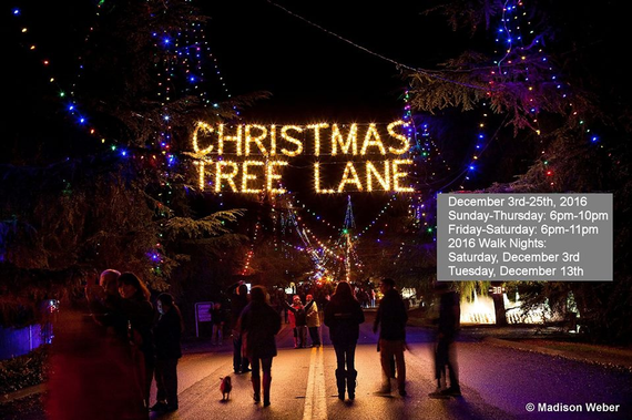 Christmas Tree Lane Fresno.Christmas Tree Lane Fresno
