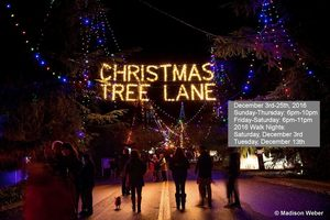 Christmas Tree Lane Fresno - start Dec 03 2016 0600PM