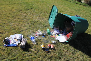Medium recycling09