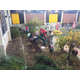 Last fall, students helped replant the courtyard. (Driggs Facebook)