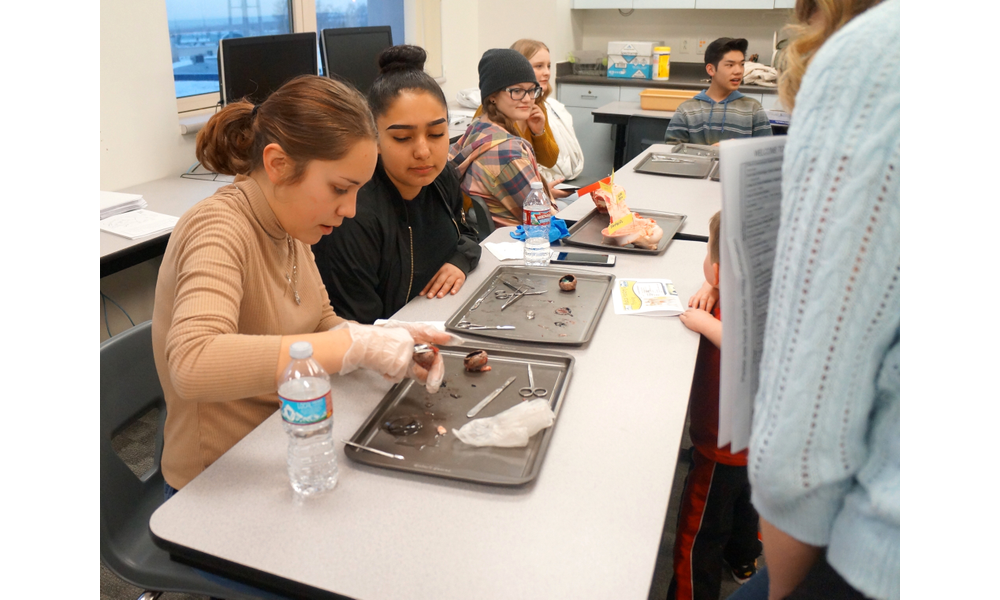 Granite Technical Institute wows at Career and Technology Education ...