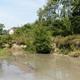 Limestone Run (Bull Run) showing stream bank erosion prior to stream and habitat restoration  Photo by Shanon L. Burkland Stamm, Union County Conservation District.