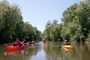 Medium canoe 201