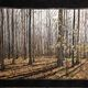 """""""Let Us Walk in the Light,"""" the winner of the Award in Excellence and Viewer's Choice Award at the 2016 Springville Museum of Art Annual Quilt Show. (Mary Hutchings)"""