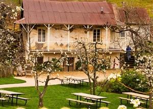 Medium boeger winery