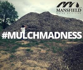 Medium  23mulchmountain 20fb