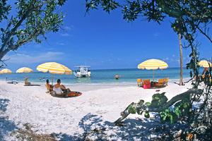 Medium aip beach picture