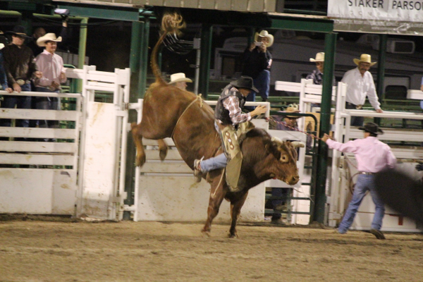 Fort Herriman Days will begin hold a rodeo event on June 2 and 3. (Herriman City)