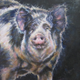 'Miss Piggy' by Reenie Chase.