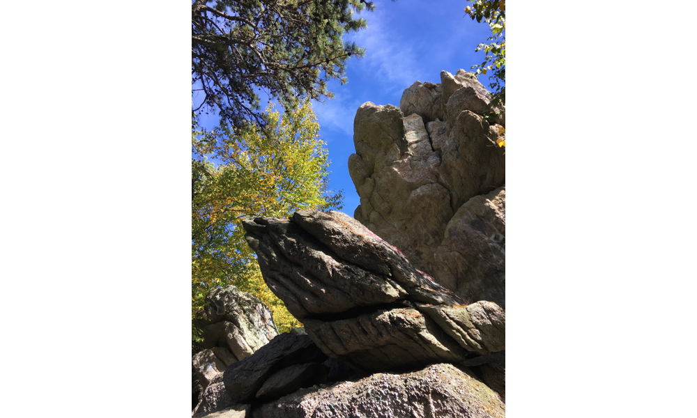 Let a Visit to Michaux Forest Rock Your World | Susquehanna Life