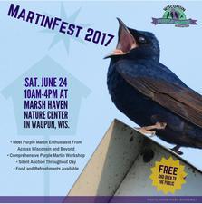 Medium martinfest2017