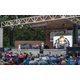 Alex Boye performs at Midvale Harvest Days 2016. (Midvale Arts Council)