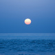 New Moon Meditation participants will this year eclipse donations to SCCF's sea turtle programs. Photo by Dawn Biery.