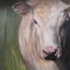 'Holy Cow' by Erica Winne.