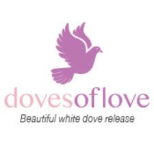 Medium doves of love