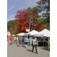 Covered Bridge Festival