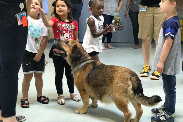 The kids got to join the fun, meeting a few of the canine residents at Animal Friends.
