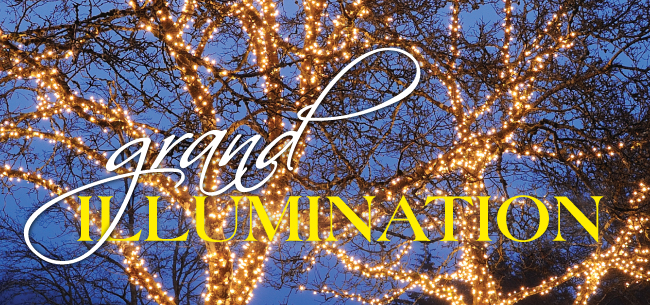 Grand illumination 2016 650x305 subpage