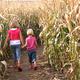 Kids' Farm Pass, $12 (includes hay ride, corn maze and more) at The Pumpkin Farm, 7736 Old Auburn Road, Citrus Heights. 916-726-1137, pumpkinfarm.net