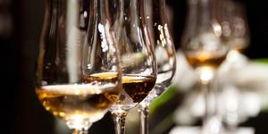 Medium casa wellnes wine and olive oil tasting casa romantica