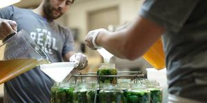 Medium casa wellness pickling kombucha class