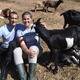 Go goats Brush removal company wins Shark competition - 10242017 0427PM