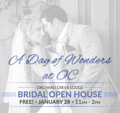 Medium bridal open house frontpage banner   jan 2018
