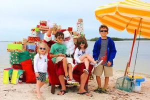 Santas Dolphin  Wildlife Cruise to Picnic Island - start Dec 24 2017 1000AM