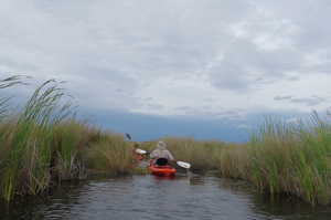 Paddling the Turner River through the Big Cypress National Preserve offers a chance to explore multiple habitats in one day Photo courtesy of Judith Biery