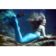 Weeki Wachee mermaids are also very accomplished out of the water. Katie, who is from Brooksville, is fluent in German. Photo courtesy of Weeki Wachee Springs State Park.