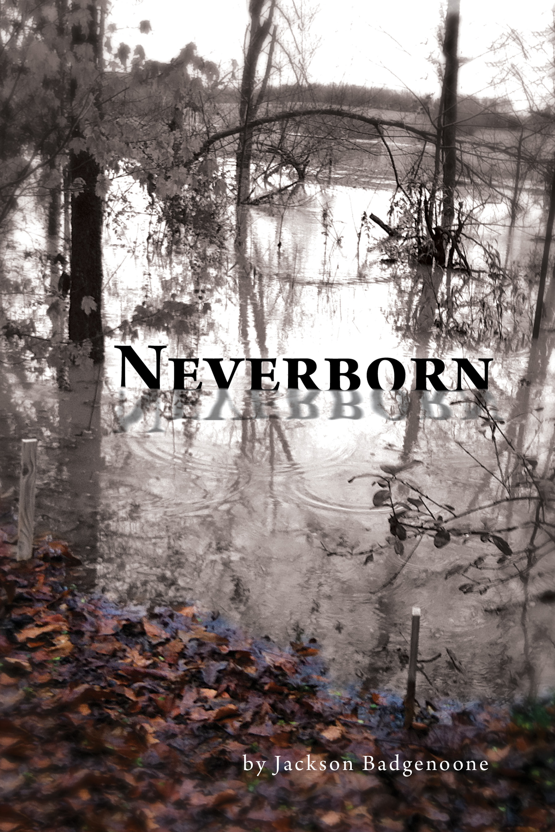 Neverborn 20cover
