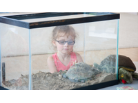 Mariah and turtle 7.11 1030x583