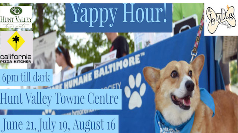 Yappy 20hour 20facebook 20event 20cover 20hunt 20valley