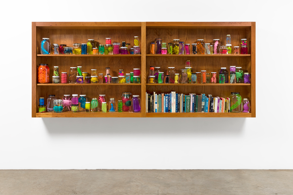 Mark Dion, Institute for Invertebrate Marine Biology, 2017, wood cabinet, plastic and rubber children's toys, sex toys, glass specie jars, and books, 48 x 111 ½ x 12 inches. Courtesy of the artist and Tanya Bonakdar Gallery, New York.