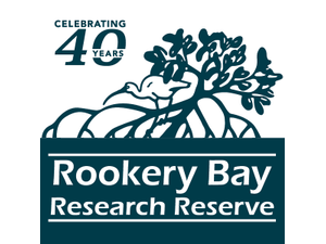 Rookery Bay Environmental Learning Center - Naples FL