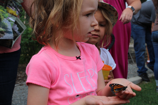 A butterfly lands on a young girl's hand.