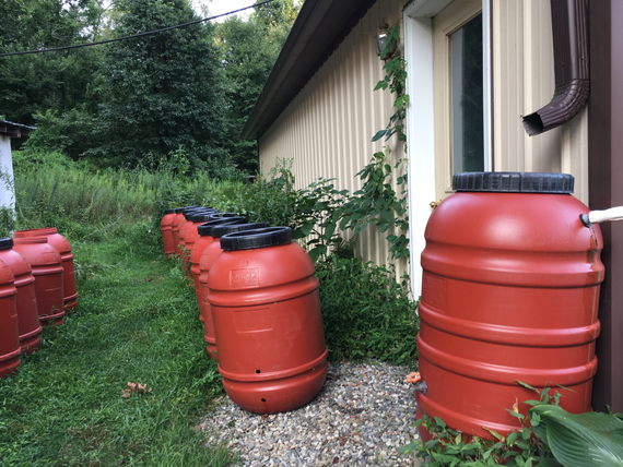 Rainbarrel landscape