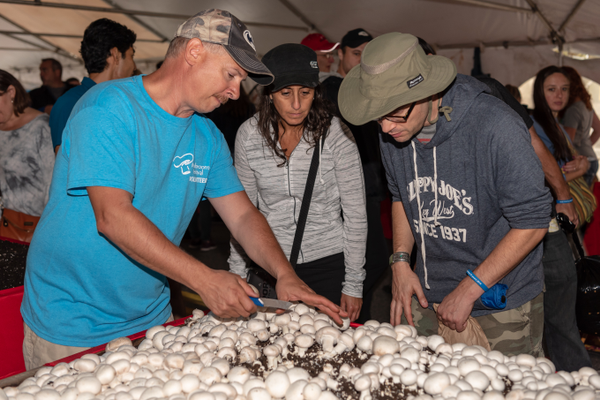 Inside the Growers Tent, visitors could learn about the many varieties of locally grown mushrooms.