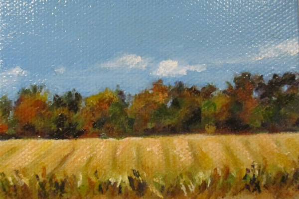 'Late Fall Fields, Thornbury' by Victoria McNeil Levine.