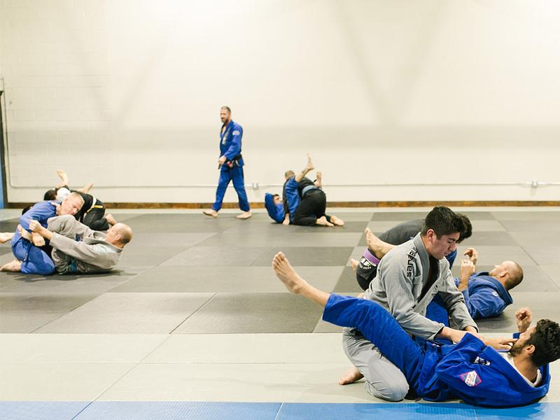Websi North American Brazilian Jiu Jitsu Federation – Icalliance