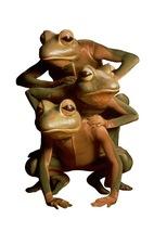 Medium frogz