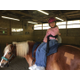 Equine therapy at Verland