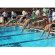 Competitors dive in at the beginning of their race at the Jennersville Y Photo by Chris Barber