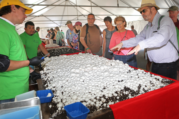 Local growers explain how they produce their crop at an extensive exhibit in the growing tent.