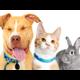 Placer SPCA Adoption  Education Center