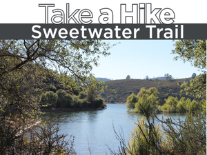 Take a Hike to Sweetwater Trail
