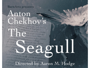 THE SEAGULL by Anton Chekhov Directed by Aaron M Hodg - start Feb 14 2020 0700PM
